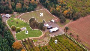 تقسیم بندی مزرعه به نواحی یکنواخت نمونه برداری خاک کشاورزی